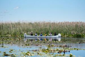 Sturgeon creek canoe 10